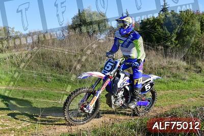 ALF75012