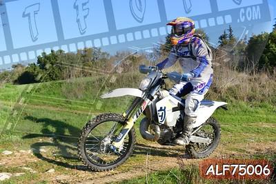 ALF75006