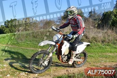 ALF75007