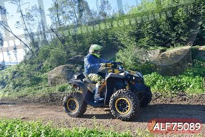 ALF75089