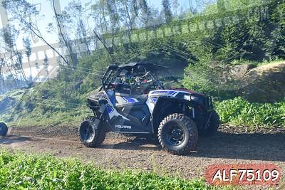 ALF75109