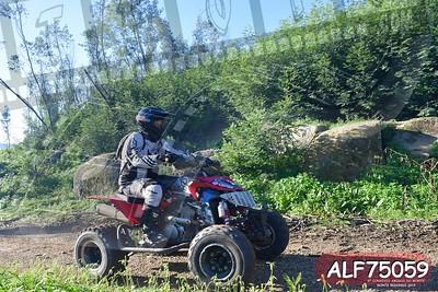 ALF75059