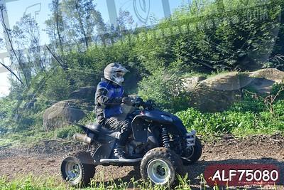 ALF75080