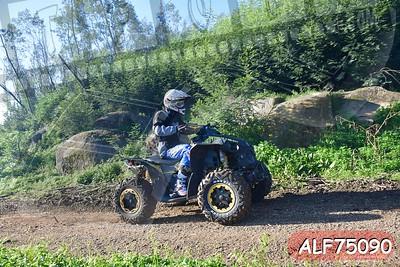 ALF75090