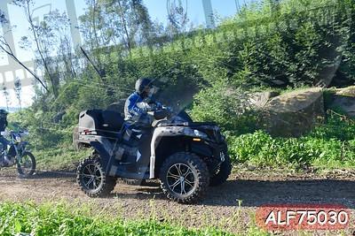 ALF75030