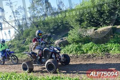 ALF75094