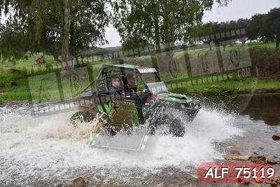 ALF 75119