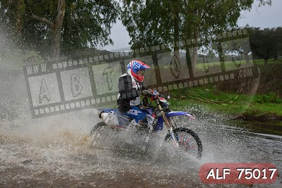 ALF 75017