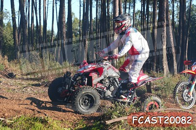 FCAST20082