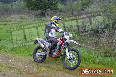 DECIO60011