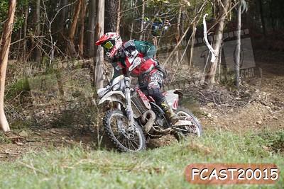 FCAST20015