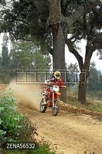 ZENA56532