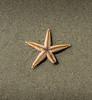 Starfish-002