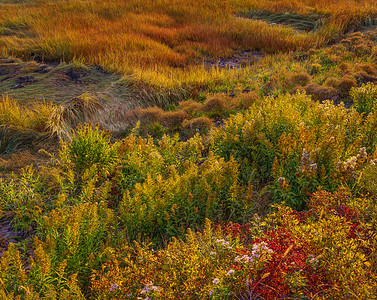 JW_3904_B_LOWLOW_EXPOSURE_1620_9-30-93_NEAR_RT_1_MAINE-