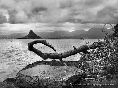 Chinaman's Hat. Tiny island off the shores of Oahu, Hawaii