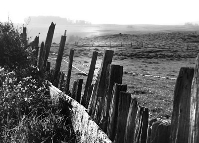 Farmland fence in Northern California near Petaluma