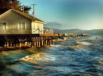 Northern California coast near Petaluma