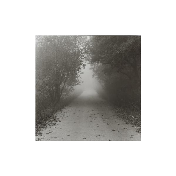 Dlhú noc lesný<br /> duch z konárov zvešiava.<br /> Presvitá už deň.