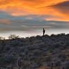 Peridot Mesa Sunset II