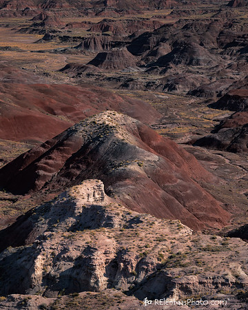 Petrified Forest I, Painted Desert