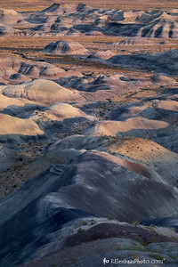 Painted Desert V
