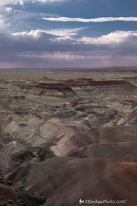 Painted Desert VII
