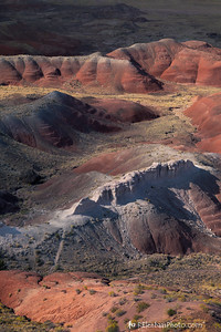 Petrified Forest VI, Painted Desert