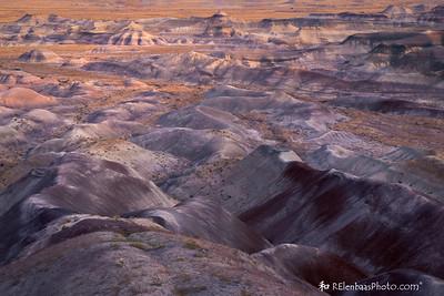 Painted Desert III
