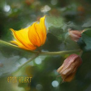 10 Open Heart P1034919