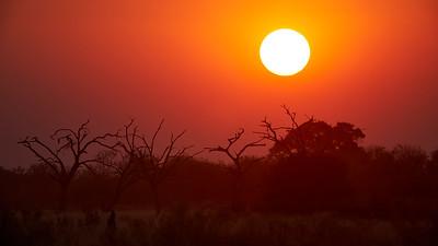"""Landscape (Katima Mulilo / Zambezi / Namibia - 18°38'12.359"""" S 24°5'32.699"""" E)"""