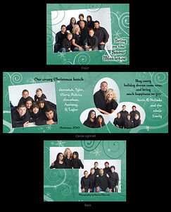 Setzer card 2010