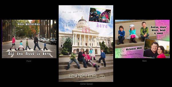 Davis card 2010