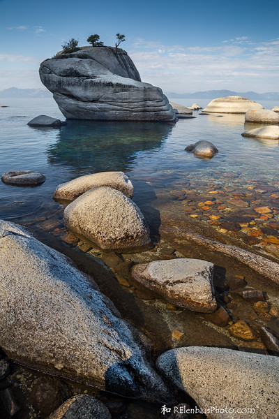 Bonsai Rock I