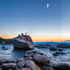 Bonsai Rock Sunset II