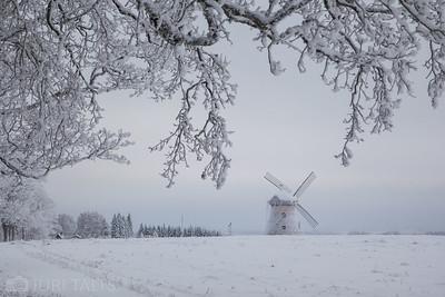 Kuremaa windmill