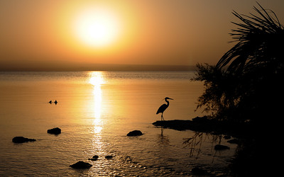 Lac Afdera