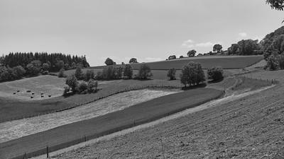 20200531 Courzieu La Brévenne randonnée (Filtre vert) (Route des Crêtes/Courzieu/Auvergne-Rhône-Alpes/France - N45°43.881' E4°36.131' - Altitude : 814m)