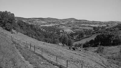 20200531 Courzieu La Brévenne randonnée (Filtre vert) (Chemin de la Voûte/Courzieu/Auvergne-Rhône-Alpes/France - N45°44.413' E4°33.336' - Altitude : 459m)