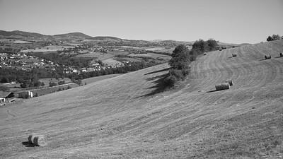 20200531 Courzieu La Brévenne randonnée (Filtre vert) (Les Gouttes/Courzieu/Auvergne-Rhône-Alpes/France - N45°44.439' E4°33.092' - Altitude : 428m)