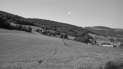 20200531 Courzieu La Brévenne randonnée (Filtre vert) (Route de la Verrière/Courzieu/Auvergne-Rhône-Alpes/France - N45°43.573' E4°33.003' - Altitude : 679m)
