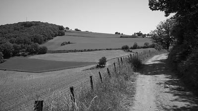 20200531 Courzieu La Brévenne randonnée (Filtre vert) (Route des Crêtes/Courzieu/Auvergne-Rhône-Alpes/France - N45°43.484' E4°35.294' - Altitude : 814m)