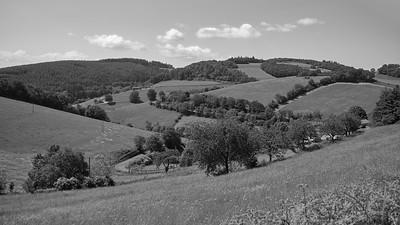 20200531 Courzieu La Brévenne randonnée (Filtre vert) (Le Gilet/Courzieu/Auvergne-Rhône-Alpes/France - N45°43.273' E4°34.552' - Altitude : 822m)