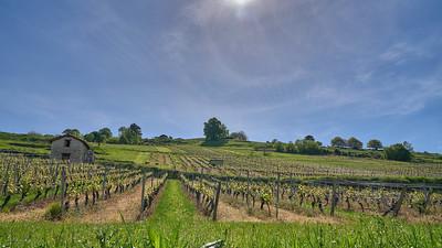 """Poncin et sa région - Randonnée - 46°4'59"""" N 5°26'22"""" E - 412,2m (Saint-Alban - Auvergne-Rhône-Alpes)"""