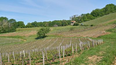 """Poncin et sa région - Randonnée - 46°5'15"""" N 5°26'14"""" E - 385,2m (Poncin - Auvergne-Rhône-Alpes)"""