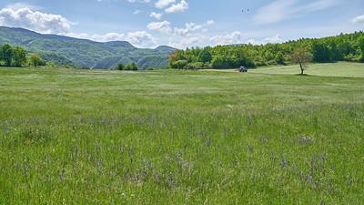 """Poncin et sa région - Randonnée - 46°5'33"""" N 5°27'40"""" E - 543,1m (Saint-Alban - Auvergne-Rhône-Alpes)"""