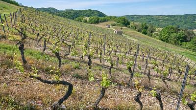 """Poncin et sa région - Randonnée - 46°4'59"""" N 5°26'24"""" E - 422,6m (Saint-Alban - Auvergne-Rhône-Alpes)"""