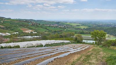 "Mornant randonnée avril 2017 -  45°37'43"" N 4°37'11"" E - 576,4m (Chausson - Auvergne-Rhône-Alpes)"