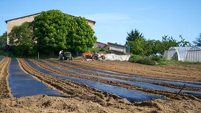 "Mornant randonnée avril 2017 -  45°37'12"" N 4°38'59"" E - 417,6m (Saint-Sorlin - Auvergne-Rhône-Alpes)"