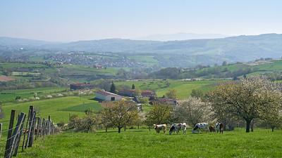 """Savigny et sa région. Randonnée - 45°48'26"""" N 4°33'8"""" E - 452,2m (Savigny - Auvergne-Rhône-Alpes)"""