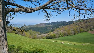 "Courzieu La Brevenne - 45°43'28"" N 4°35'20"" E - 819,6m (Yzeron - Auvergne-Rhône-Alpes)"